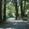 Exit the Highway this Summer and Explore the Scenic Route