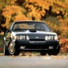 Mustang of the Day: 1984 Ford Mustang SVO