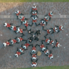 New OK Go Music Video Features Honda UNI-CUBs, Is Awesome
