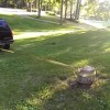 [Video] Chevy TrailBlazer Plays Tug-of-War with Tree Stump, Loses