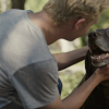 New Subaru Commercials Cause Emotional Breakdowns