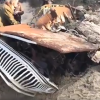 UPDATE: Decayed Jeep Wagoneer Buried Under Sand for 40 Years Removed