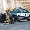 Ford Reveals Pursuit-Rated Police Responder Hybrid Sedan