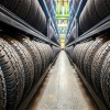 GM Announces Plans to Develop Sustainable Natural Rubber Tires