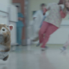 Kia Refreshes Hamster Commercials with baby Turbo Hamster