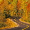 How to Navigate Fall Driving Challenges