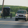 How to Safely Share the Road in Amish Country