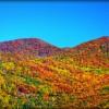 Scenic Road Trips in North Carolina