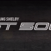 2019 Ford Mustang Shelby Gt500 Logo The News Wheel