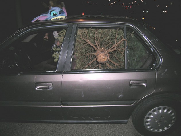 Tips On How To Transport A Christmas Tree The News Wheel - Christmas Tree On Car