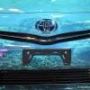 Shedd Aquarium 2014 Prius V grill