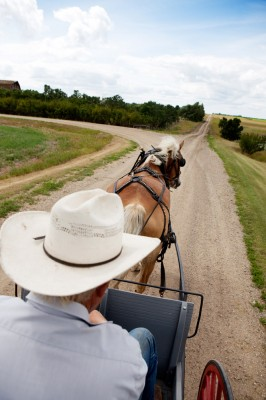 Amish buggy in hit-and-run