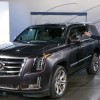 GM Issues Stop-Sale Order