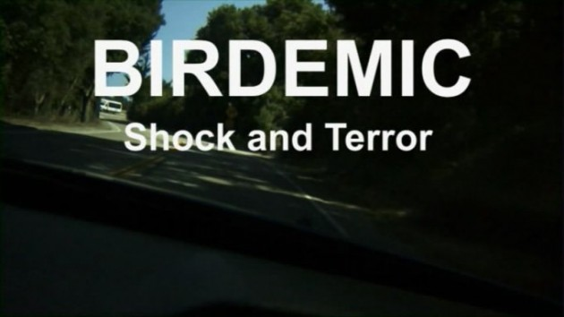 Birdemic Review