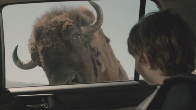 2015 Subaru Outback ad