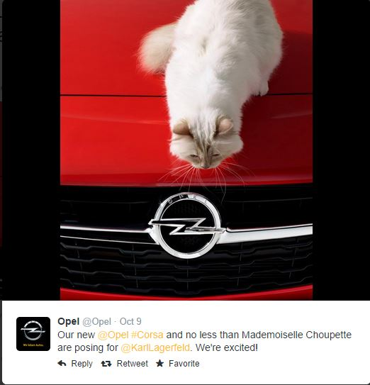 Karl Lagerfeld Cat PhotoShoot Opel Cars in Cats 1 5