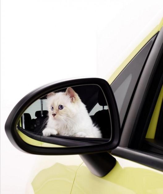 Karl Lagerfeld Opel's 2015 Calendar Opel Cats in Cars 1 (6)