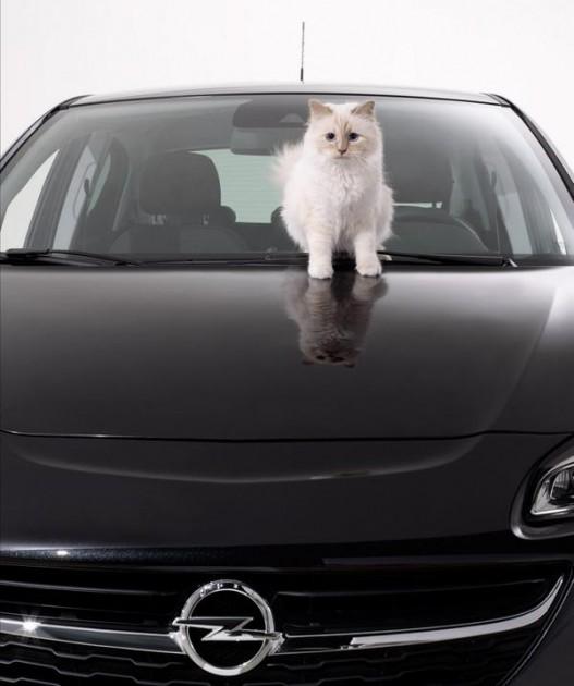 Karl Lagerfeld Opel's 2015 Calendar Opel Cats in Cars 1 (8)