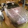 Nissan Sharpie 9