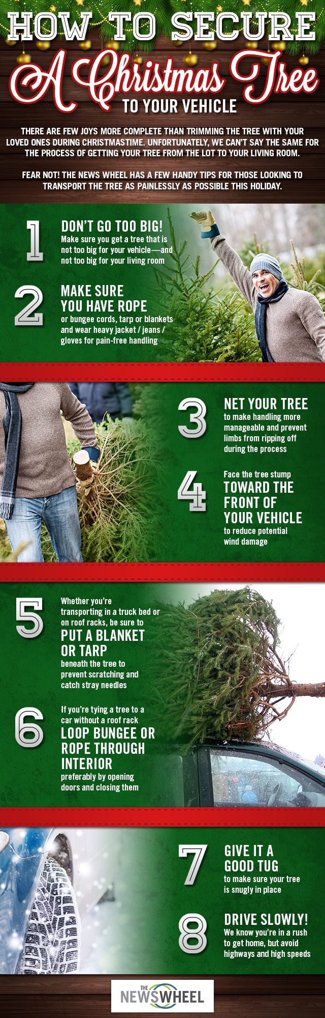 How to Secure a Christmas Tree to Your Vehicle