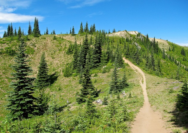 Off-Road parks in Washington naches peak