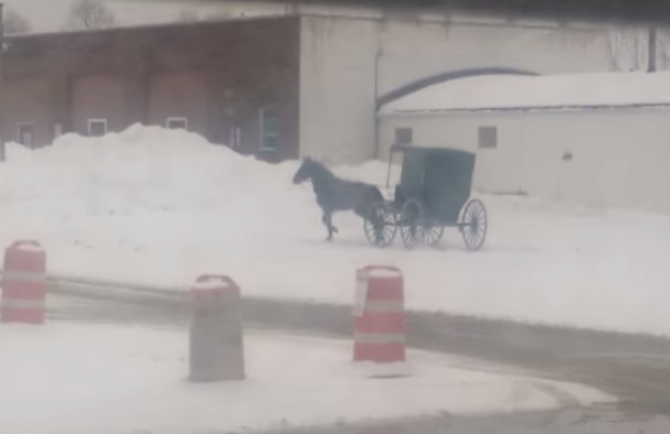 Amish buggy doing donuts in Ohio