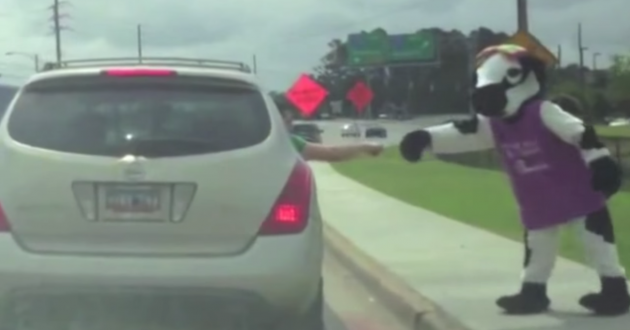 A South Carolina motorist gives a Chic-fill-A mascot a fist bump in a bad driving video compilation