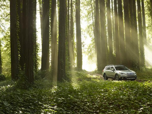 Subaru is sharing its zero landfill knowledge with the National Park Service