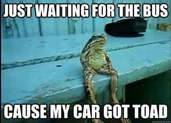 car got toad