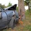 Car crash into tree