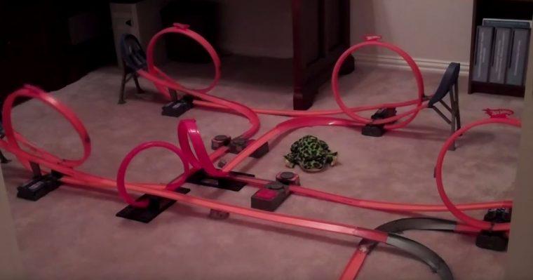 coolest hot wheels tracks ever built
