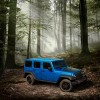 2016 Jeep Wrangler Unlimited Black Bear Edition Silhouette