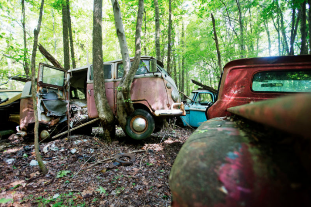 Old Car City VW Bus and Tree