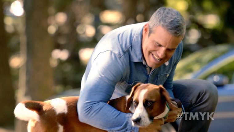"Andy Cohen, his dog Wacha, and a Subaru star in the newest ""The More You Know"" spot to promote pet adoption"