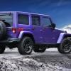 2016 Jeep Wrangler Backcountry Rear End