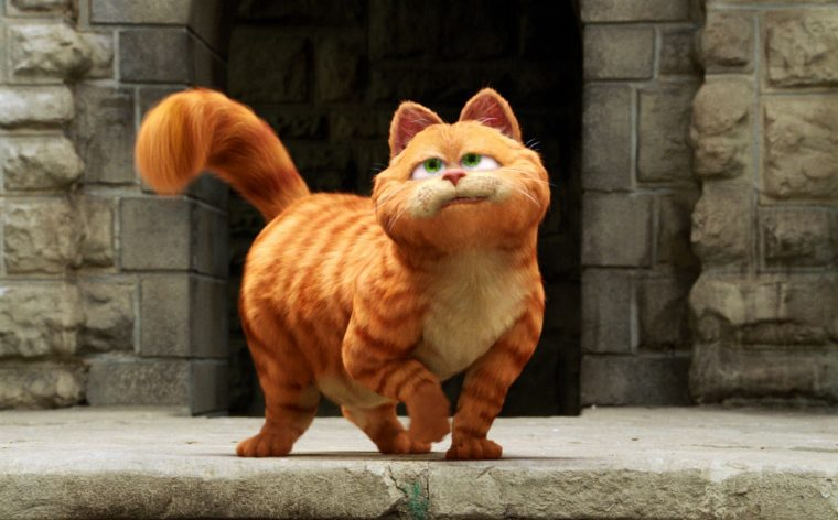 The missing cat vaguely resembled this thing, except cuter and not sounding like Bill MurrayPhoto: 20th Century Fox