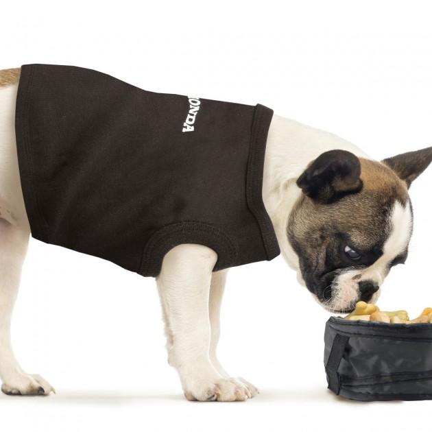 Honda dog shirt