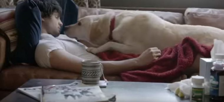 Budweiser Friends Are Waiting Drinking and Driving Dog Ad