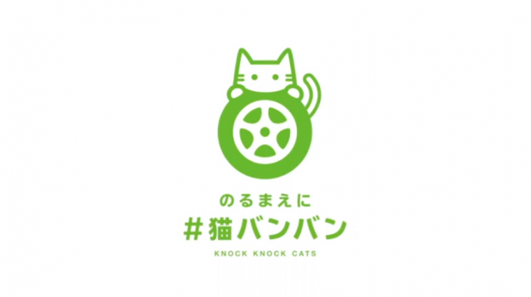 Knock Knock Cats Logo - Nissan