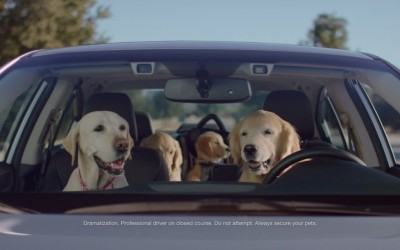 "The Barkleys are back in five new Subaru dog commercials, as part of the ""Dog Tested. Dog Approved."" campaign"