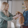 Actress Ashley Benson supports Wags and Walks for Chevy's #DayItForward campaign