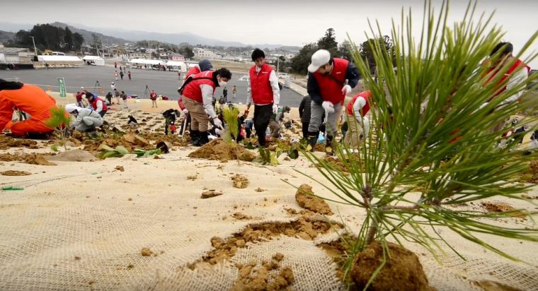 Nissan Tsunami recovery Volunteers