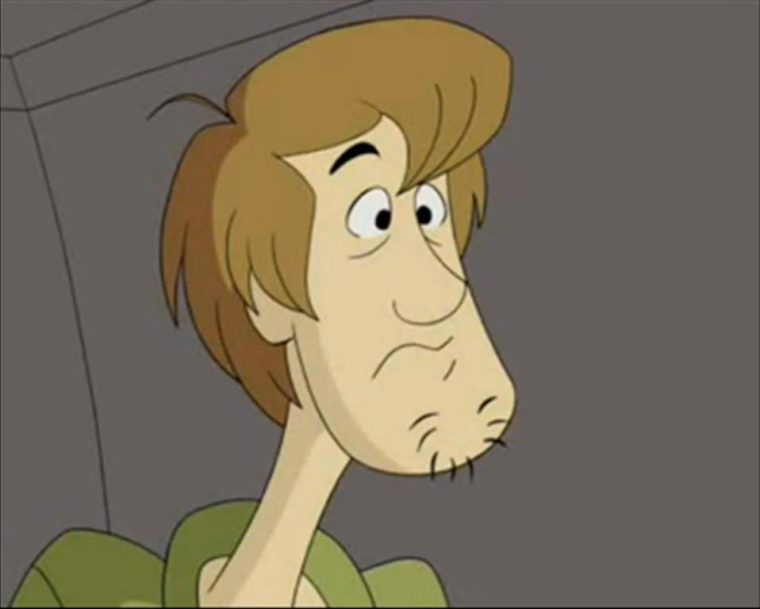 Shaggy Rogers from Scooby Doo