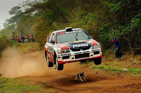 Mitsubishi Lancer Dog Jump