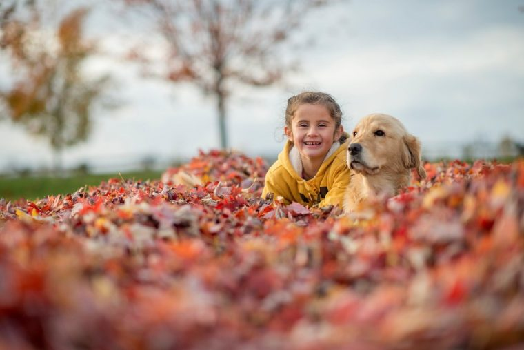 girl with dog in fall autumn leaves