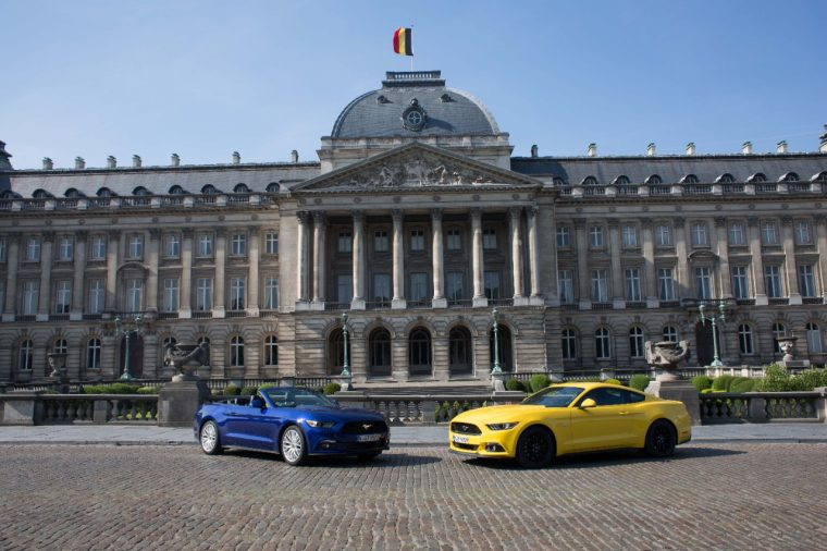 Mustangs at the Royal Palace of Brussels