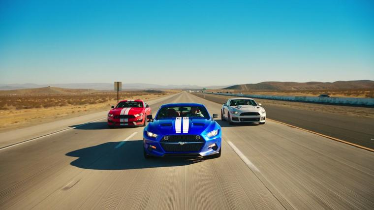 Three Mustangs