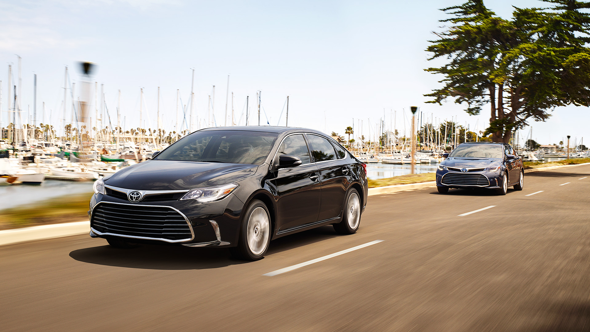 2017 toyota avalon overview the news wheel. Black Bedroom Furniture Sets. Home Design Ideas