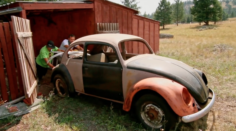 Damon Ristau's 'The Bug'