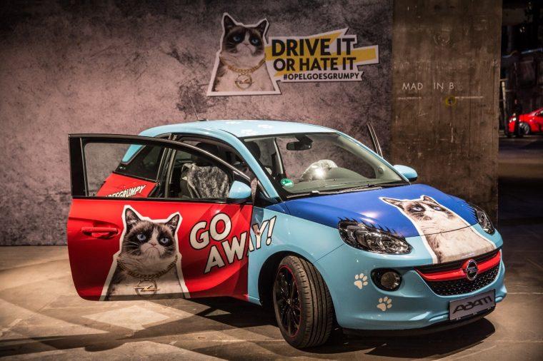 Grumpy Cat Opel ADAM